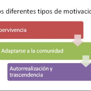 La evolución de la motivación humana y su influencia en los tres cerebros del equipo
